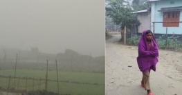 কুয়াশাচ্ছন্ন কুড়িগ্রাম জনপদ, হিম বাতাসে বাড়ছে ঠাণ্ডার তীব্রতাও