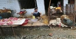 করোনার না কাটতেই চীনে আবারো খোলা হয়েছে বন্যপ্রাণীর বাজার!