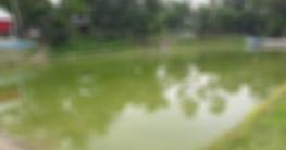 রংপুরের কাউনিয়ায় খালে ডুবে শিশুর মৃত্যু