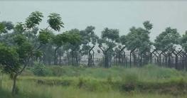 বালিয়াডাঙ্গীতে বিএসএফ'র গুলিতে যুবক নিহত