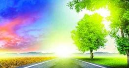 মুমিনের জীবিকা ও জীবন-সংসার ভাবনা