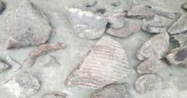 'বুড়ার দিঘী' থেকে ২০০ বছর আগের হাতির কঙ্কাল উদ্ধার