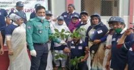 রংপুরে রোটারি ক্লাবের খাবার বিতরণ ও বৃক্ষরোপণ