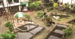 রংপুরে মৃদুলের বাড়িটি এখন 'মাছের বাড়ি'