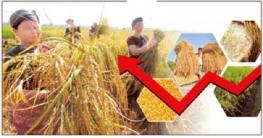 দেশের মানুষকে খাদ্য নিরাপত্তা দিয়েস্বস্তিতে রাখতে চায় সরকার