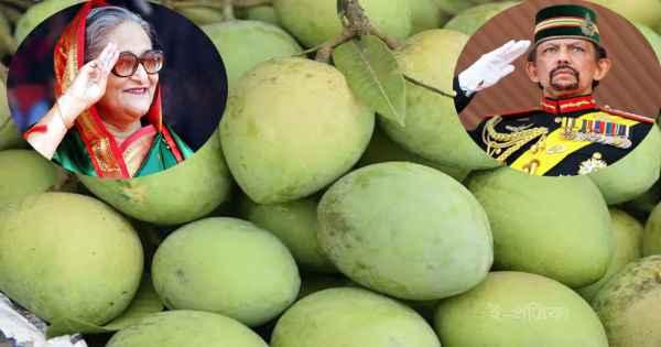 ব্রুনাইয়ের সুলতানকে 'হাড়িভাঙ্গা' আম পাঠালেন প্রধানমন্ত্রী