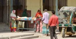 রংপুরে ৮ জনের মৃত্যু, বেড়েছে শনাক্ত-সুস্থতা