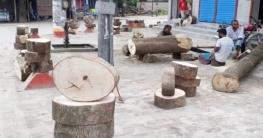 কোরবানি উপলক্ষে দিনাজপুরে বেড়েছে 'খাটিয়া' বিক্রি